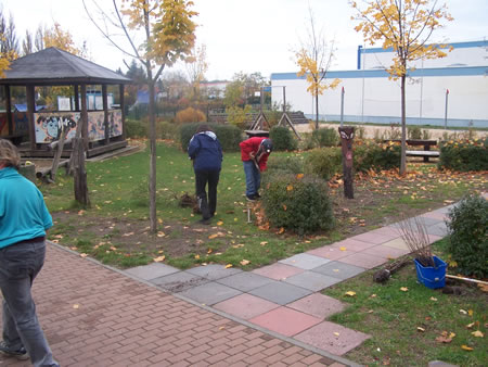 Pflanzaktion im Herbst